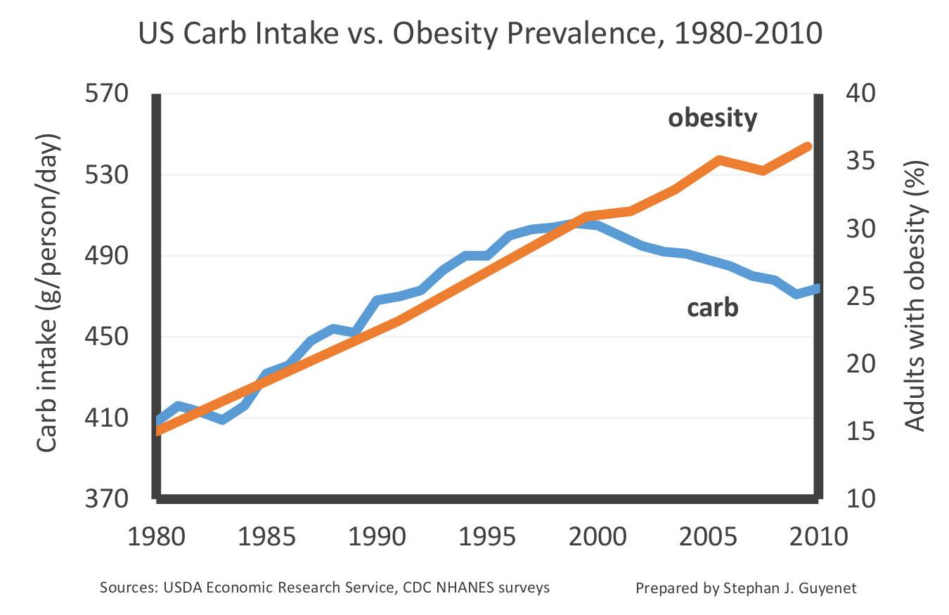 carb intake over time x obesity