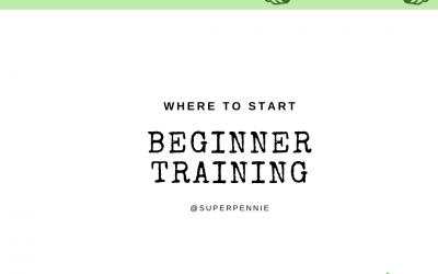 Beginner programming: the basics